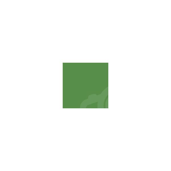 Фон бумажный Savage 35-12 Widetone Holly Зеленый 2.72x11м