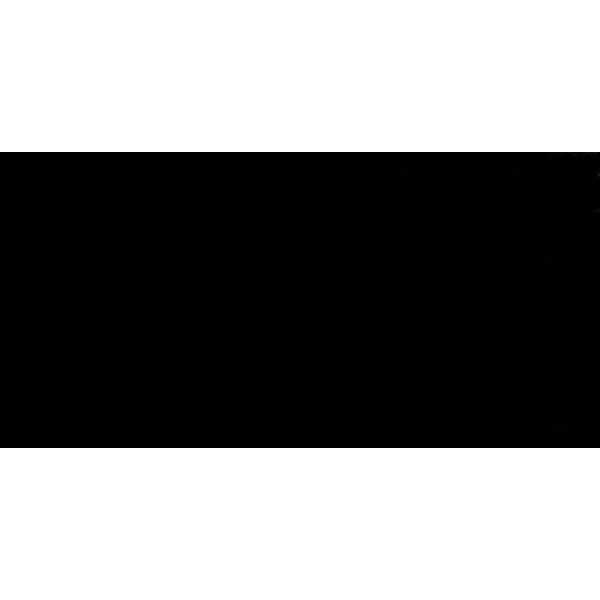 Фон Falcon Eyes Super Dense 3060 black (черный)