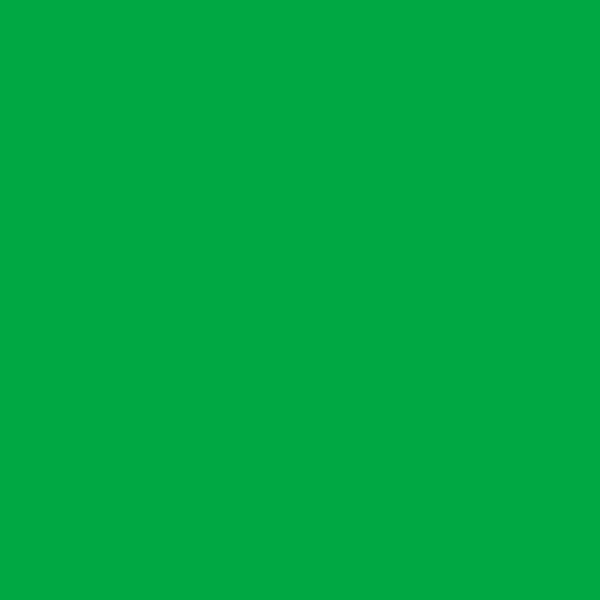 ��� �������� Polaroid Green �������� ������� 2.72x11 �